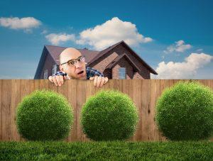 uitatul în curtea vecinului