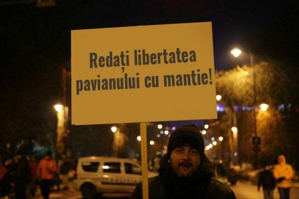 pancarta pavian