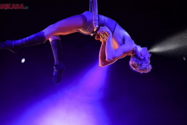 trapezist circ bucuresti