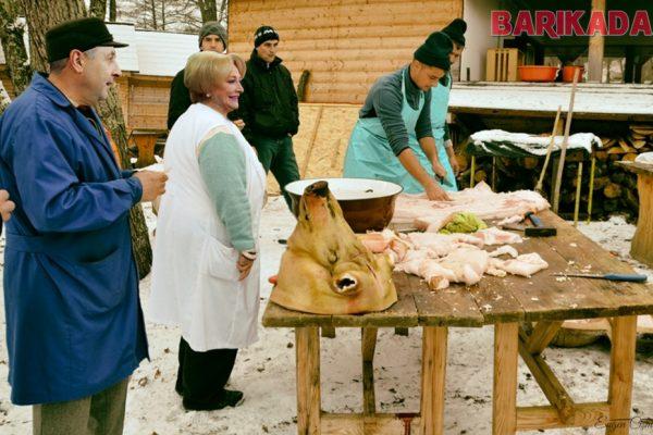 dancila pomana porcului