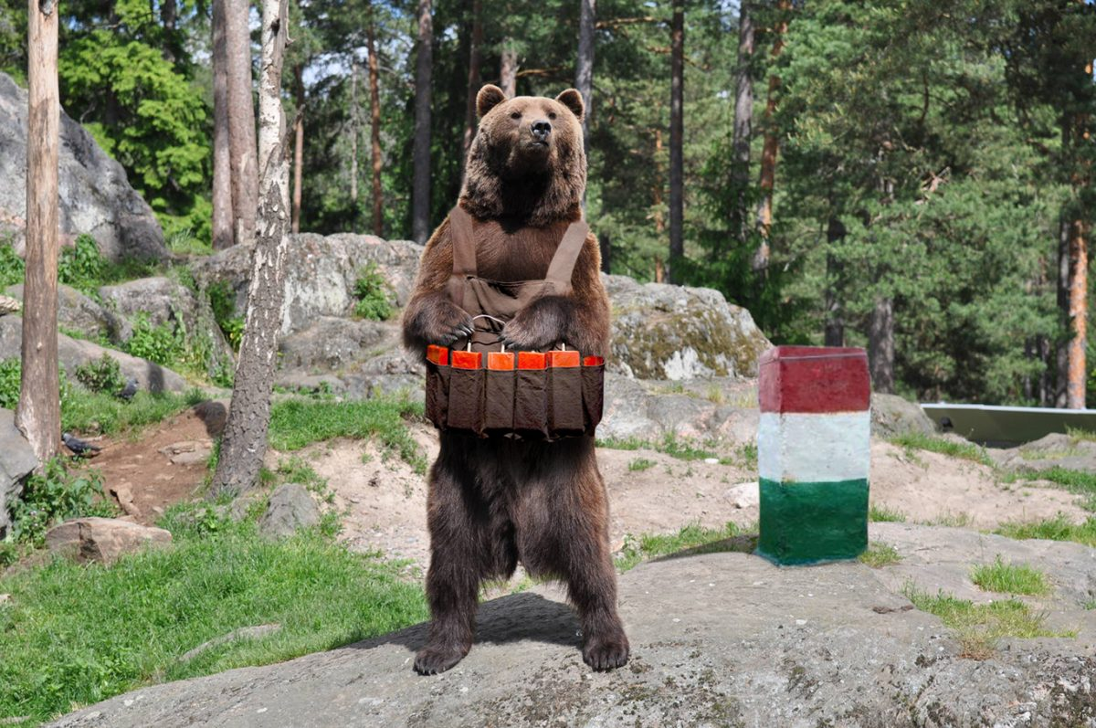ursul secuiesc