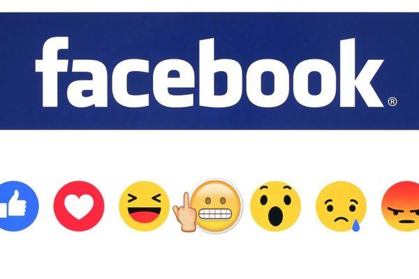 facebook plm