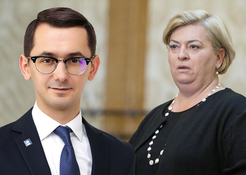 pavel popescu doina gradea deputat pnl