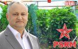 socialist dodon marijuana rusia